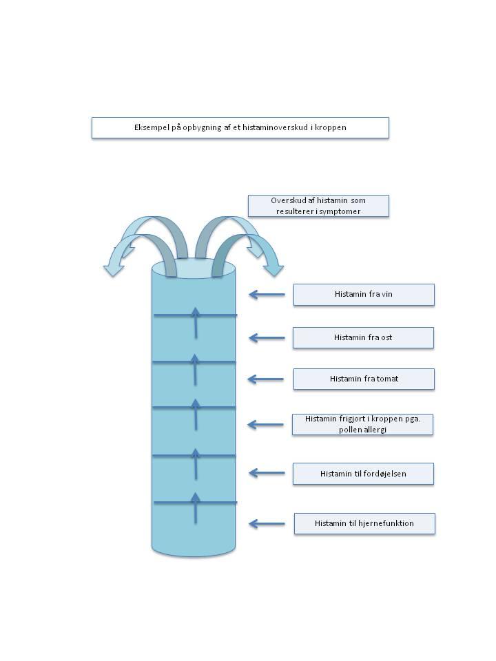 histaminintolerance symptomer